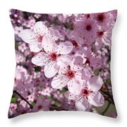 Tree Blossoms Pink Spring Flowering Trees Baslee Troutman Throw Pillow