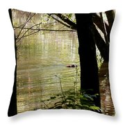 Tree Bowing To Swimming Beaver  Throw Pillow