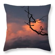 Tree Branch At Sunset Throw Pillow