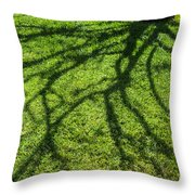 Tree Branch Shadow Throw Pillow