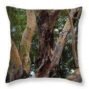 Tree Branch Texture 1 Throw Pillow