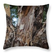 Tree Branch Texture 3 Throw Pillow