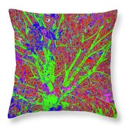 Tree Branches 7 Throw Pillow
