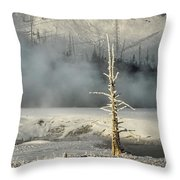 Tree By The Thermal - Yellowstone Throw Pillow