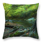 Tree By Water Throw Pillow