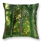 Tree Cathedral 2 Throw Pillow