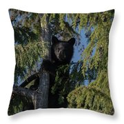 Tree Climbers Throw Pillow