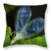 Tree Cricket Throw Pillow