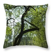 Tree Dali Throw Pillow