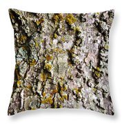 Tree Trunk Detail Throw Pillow