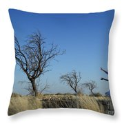 Tree Echo Throw Pillow