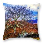 Tree Fan Throw Pillow