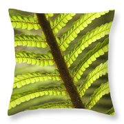 Tree Fern Frond Throw Pillow