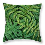 Tree Fern Fronds Throw Pillow