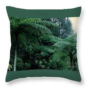 Tree Ferns Throw Pillow