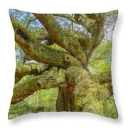 Tree For The Ages Throw Pillow