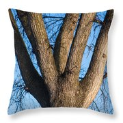 Tree Fork Throw Pillow