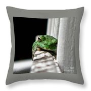Tree Frog Throw Pillow