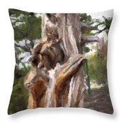 Tree Gnarl Throw Pillow