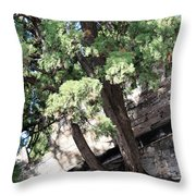 Tree Growing Through Wall Throw Pillow