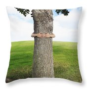 Tree Hugger 3 Throw Pillow