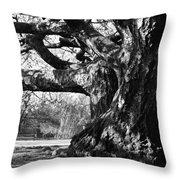 Tree I Throw Pillow