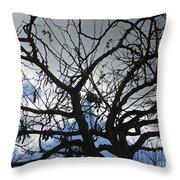 Tree In Benalmadena Throw Pillow