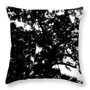 Tree In Black And White Throw Pillow