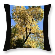 Tree In Fall Throw Pillow