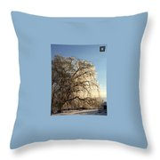 Tree In Ice Throw Pillow