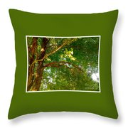 Tree In Late Summer Throw Pillow