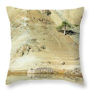 Tree In The Desert Throw Pillow