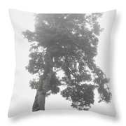 Tree In The Fog Throw Pillow