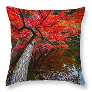 Tree In The Pond Throw Pillow