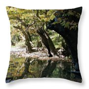Tree In The River Throw Pillow