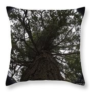 Tree In The Round Throw Pillow