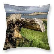 Dead Tree Laying In Front Of A Lake Throw Pillow