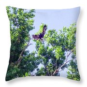 Tree Landing Throw Pillow