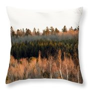 Tree Layer Cake Throw Pillow