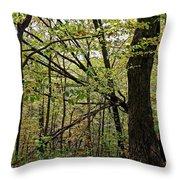 Tree Limbs Throw Pillow