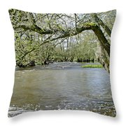Tree-lined - Swollen River Dove At Thorpe Throw Pillow