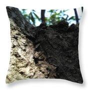 Tree Macro View Throw Pillow