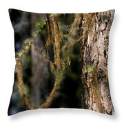 Tree Moss - Green Soft Beauty Throw Pillow