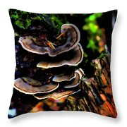 Tree Mushrooms Throw Pillow by David Patterson