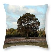 Tree No Fog Throw Pillow