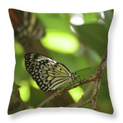 Tree Nymph Butterfly Sitting On A Tree Branch Throw Pillow