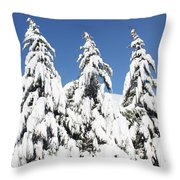 Tree-o Of Evergreens Throw Pillow