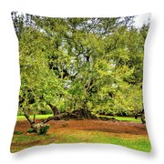 Tree Of Life 2 - Paint  Throw Pillow
