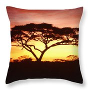 Tree Of Life Africa Throw Pillow
