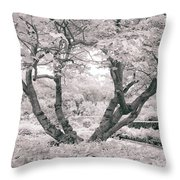 Tree Of Life II Throw Pillow
